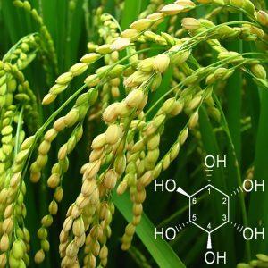 inositolo formula chimica pianta di riso
